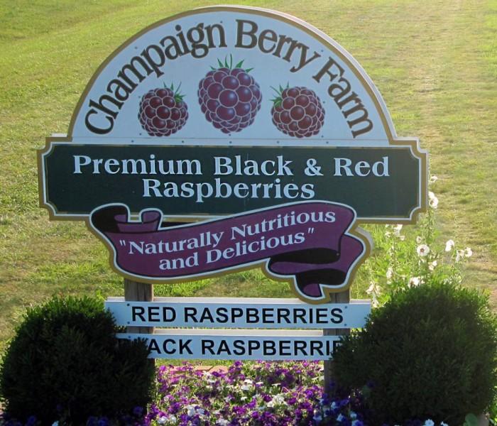 1. Champaign Berry Farm
