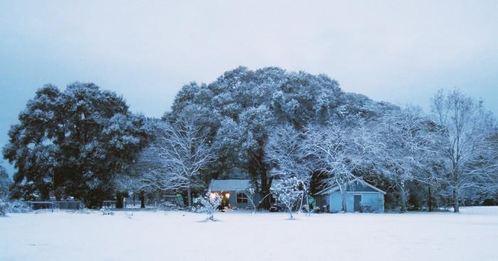 1) Snow!!