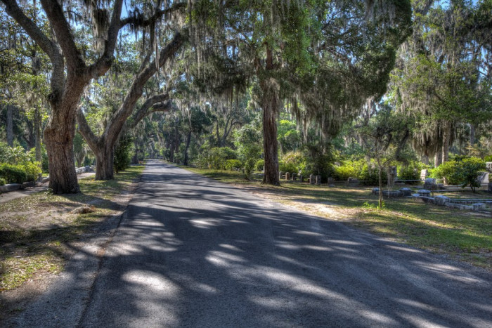 3. The road near Bonaventure Cemetery