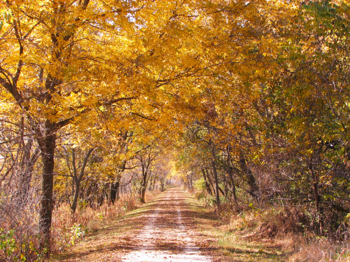 4. Enjoy the crisp, fall weather during a walk on the Wabash Trace Nature Trail in Council Bluffs.