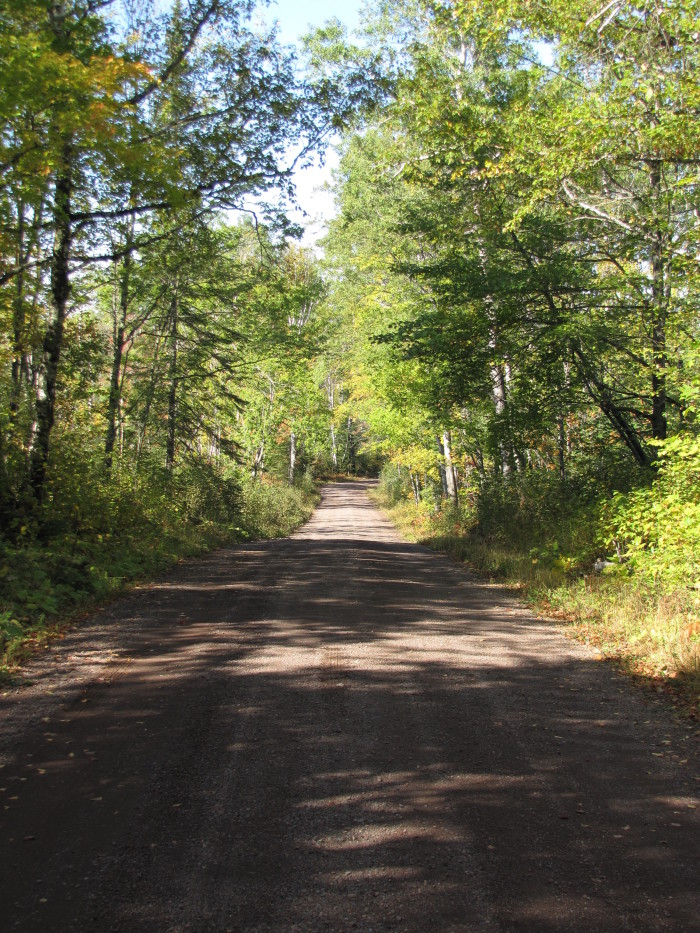 1. Getting lost in the woods - especially alone! MN is a relatively flat state and without any visible landmarks it's all too easy to get lost.