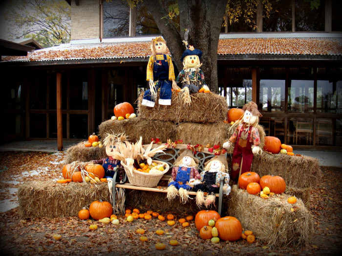 4) People are starting to decorate their lawns with all sorts of lovely fall things like scarecrows, pumpkins, and hay.