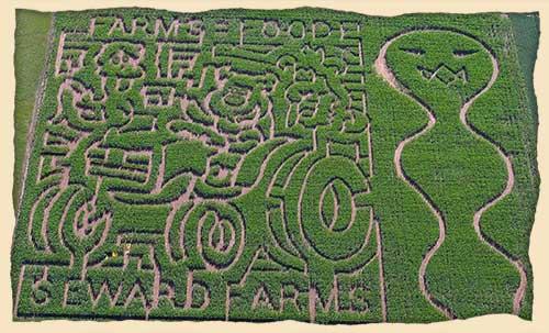 6. Corn Mazes
