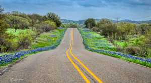Take These 12 Country Roads In Texas For An Unforgettable Scenic Drive