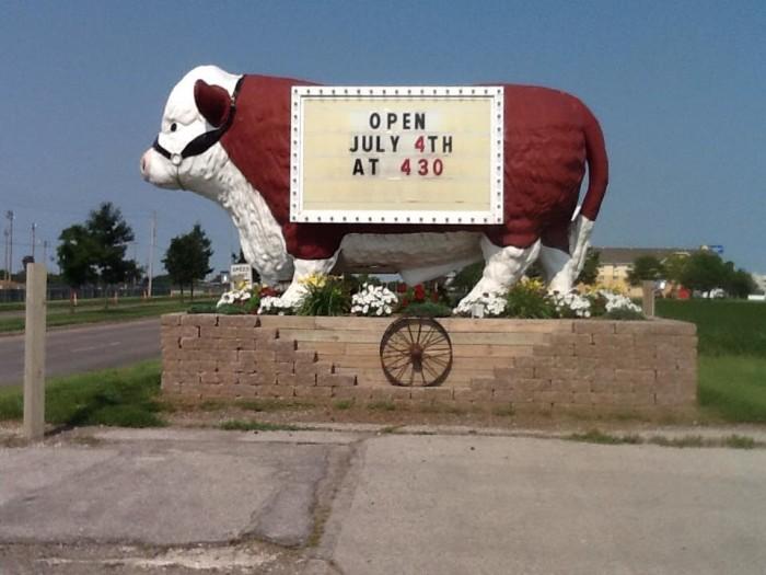 5. The Big Steer, Altoona
