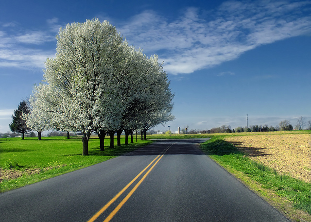 11. This peaceful drive will leave you feeling like you've escaped reality entirely.
