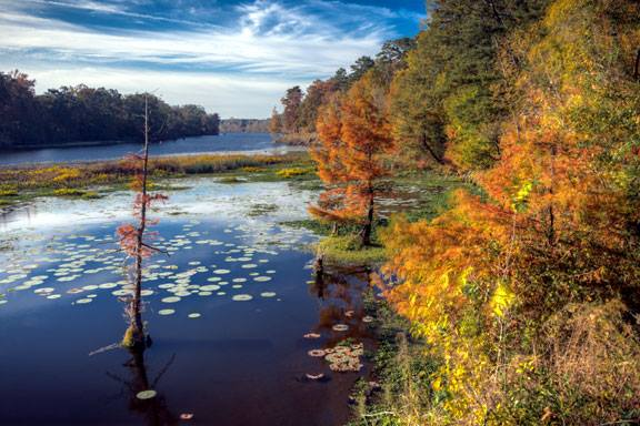 7. Natchez Trace is technically part of the national park service, but it is just too lovely to keep off this list.