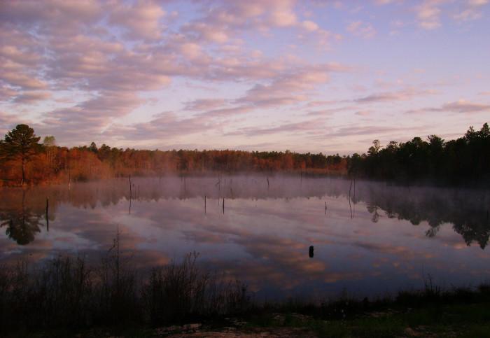 15. Carolina Sandhills National Wildlife Refuge