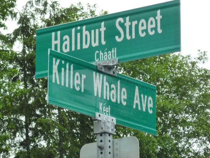9) Killer Whale Avenue