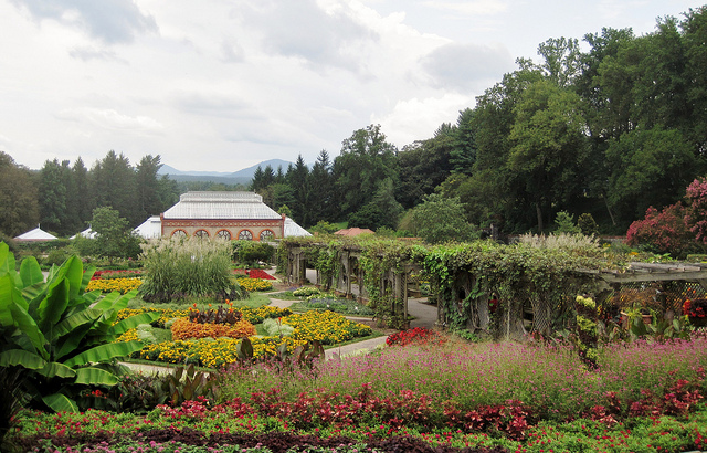 4. Visit the Biltmore House then stroll through the beautiful gardens hand-in-hand.