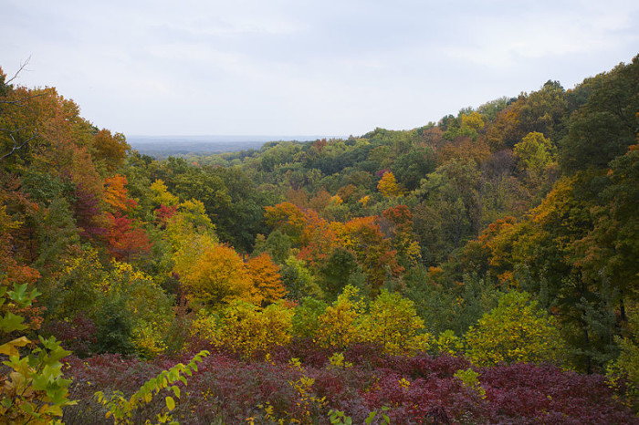 9. The state parks in Indiana become unbelievably beautiful at this time of the year!