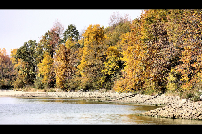 6. Enjoy the fall foliage at Big Creek State Park in Polk City.