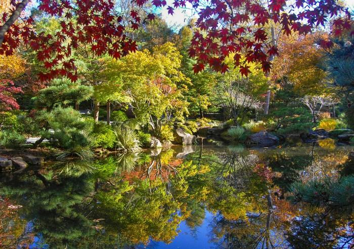 1. Fall foliage