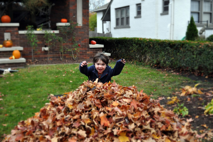 6. Jump into a freshly-raked pile of leaves.