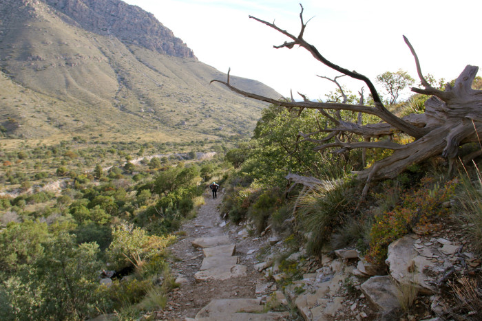 2) Guadalupe Peak Trail (Guadalupe Mountains National Park)