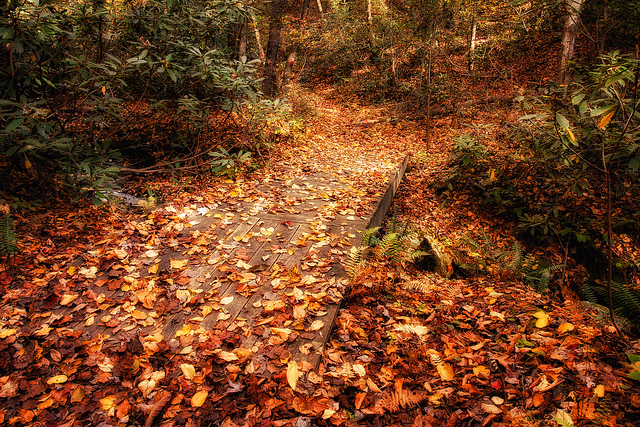 8. You can always find a quiet, peaceful trail to hike while the morning air is cool.