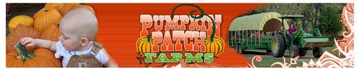 8. Pumpkin Patch Farms, Blue Mountain