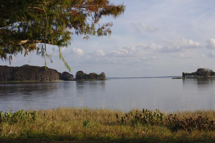 5. Lake Harris