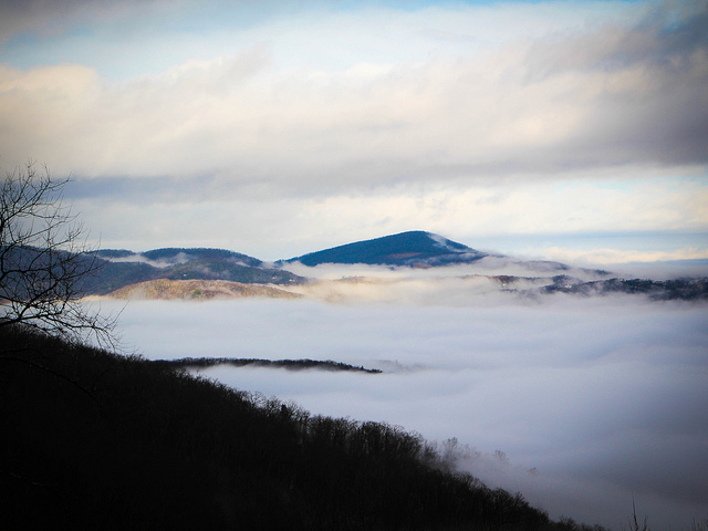 18. Living in North Carolina can feel like floating on cloud 9