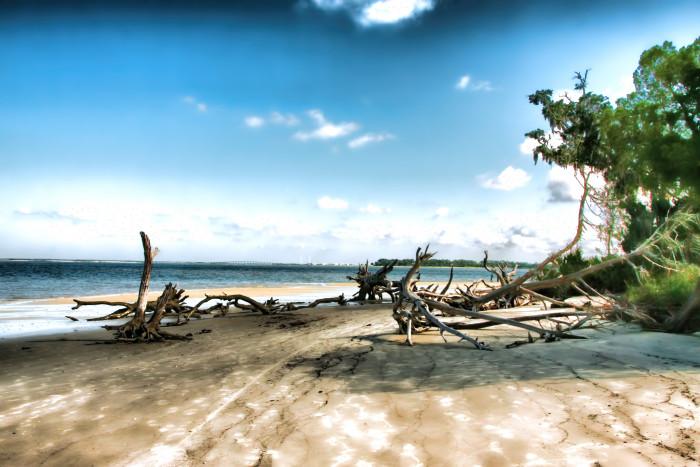 1. Driftwood Beach