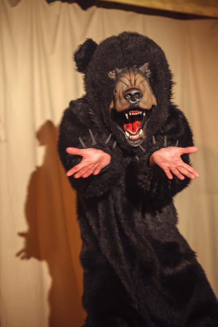 5. Florida Black Bear