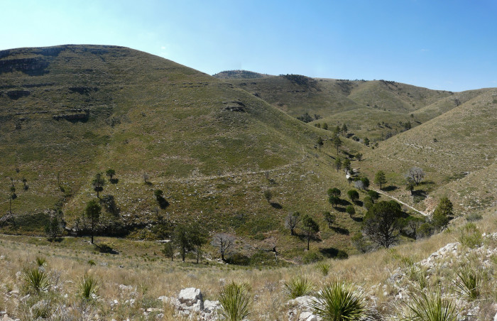 3) Bush Mountain