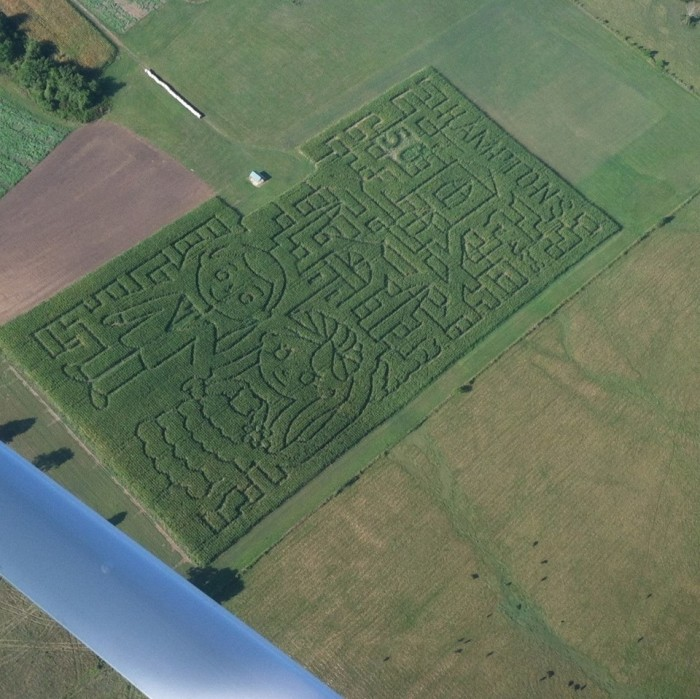 9. Hampton Corn Maze, Marshfield