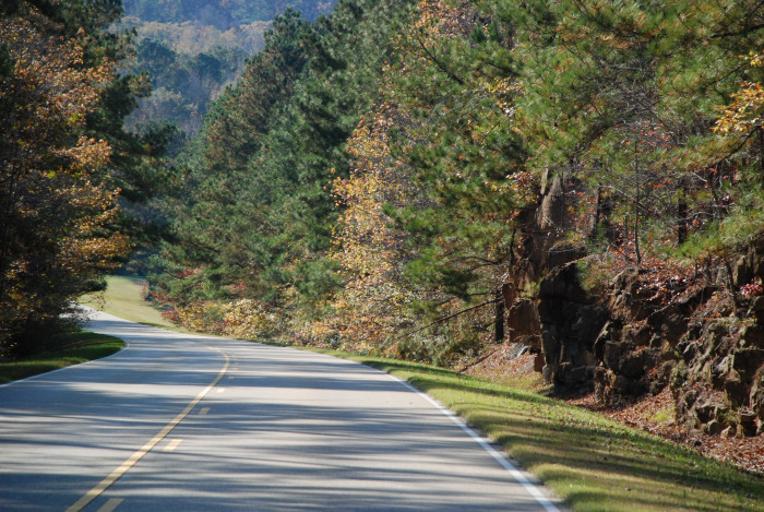 9. This photo makes it clear why the Natchez Trace Parkway is such a popular attraction.
