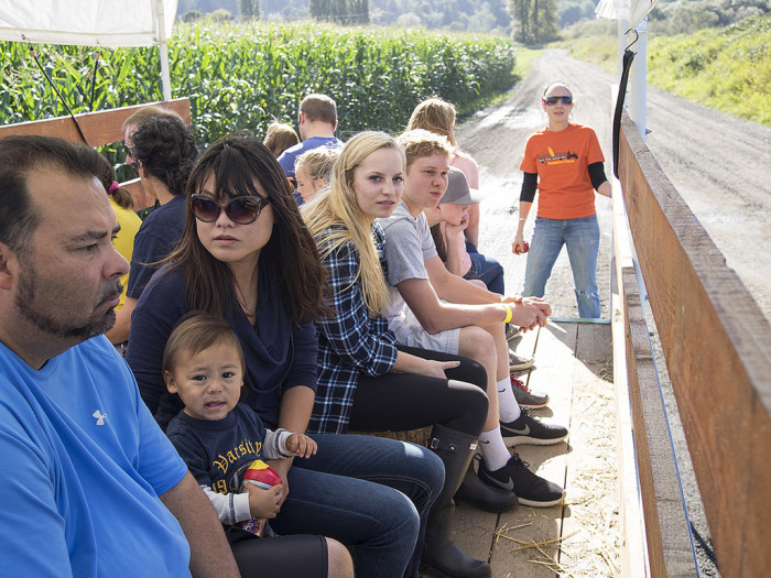 8. And relish the fun of a good old hayride.