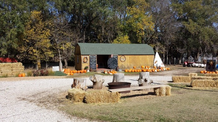 4. Browndale Pumpkin Farm (Clay Center)