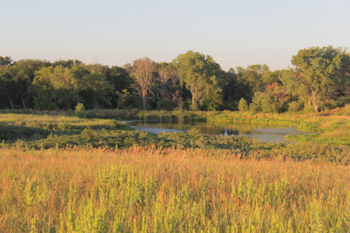 36. Spring Creek Prairie Audubon Center