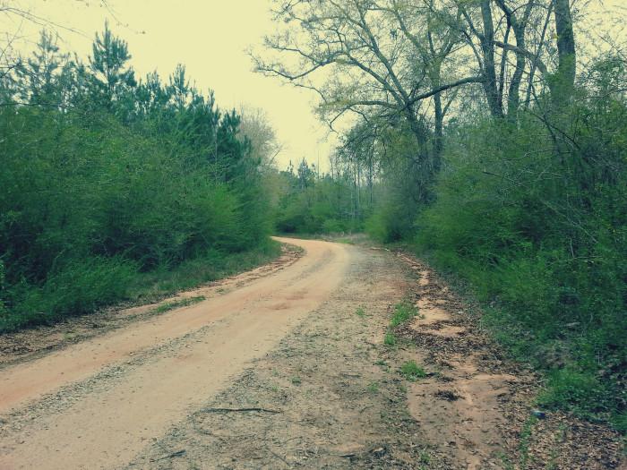 1. Rural Oglethorpe Road