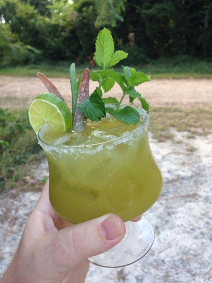 2) Louisiana Herbs, Riverton, LA