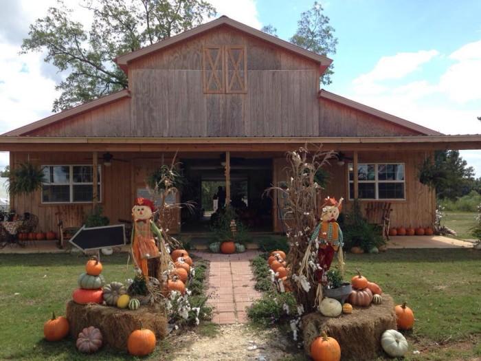 6. Backyard Orchards Pumpkin Patch