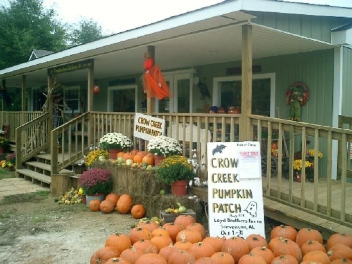 3. Crow Creek Pumpkin Patch