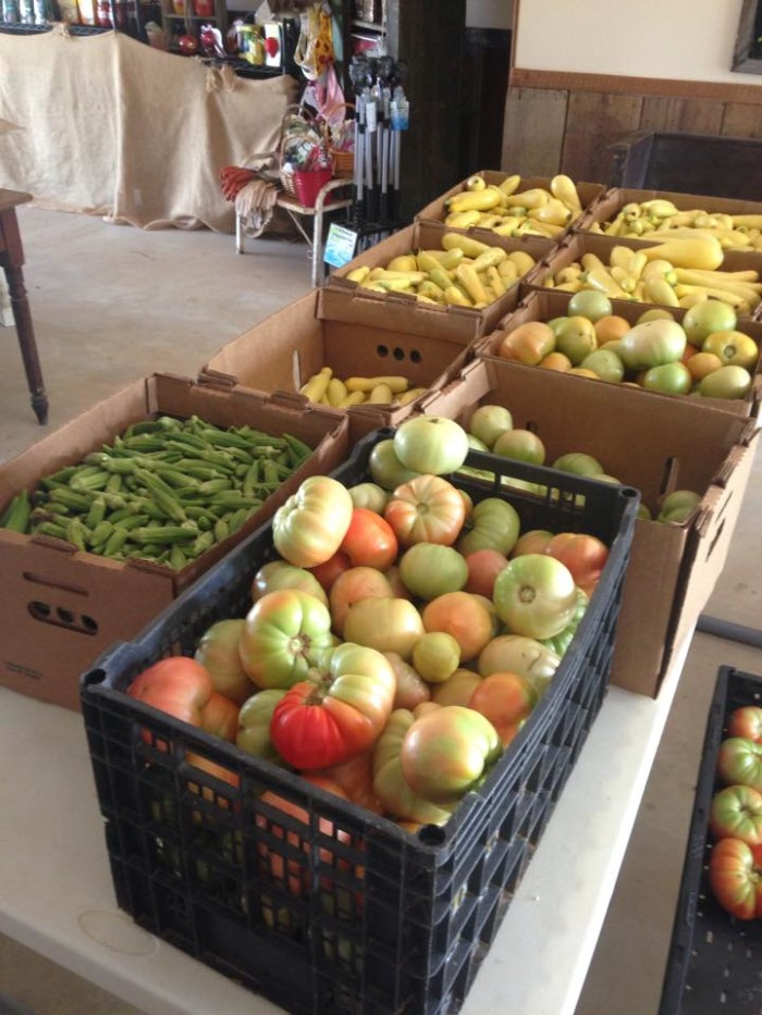 1. Backyard Orchards - Eufaula, AL