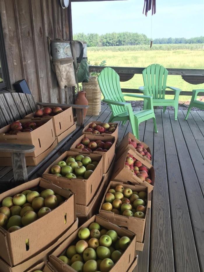 7. Mountain View Orchards - Jemison, AL
