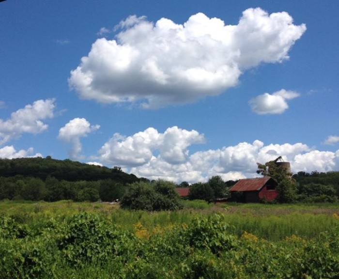 11. The view from Route 517 in Allamuchy, taken by Denise Weeks.