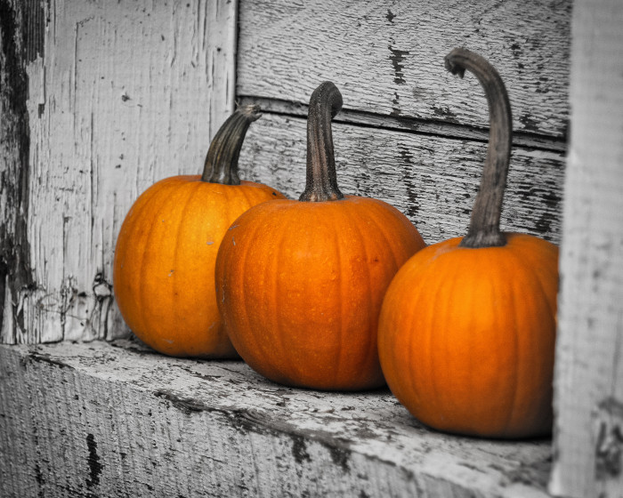 7) Or miss checking out your neighbor's awesome fall decor.