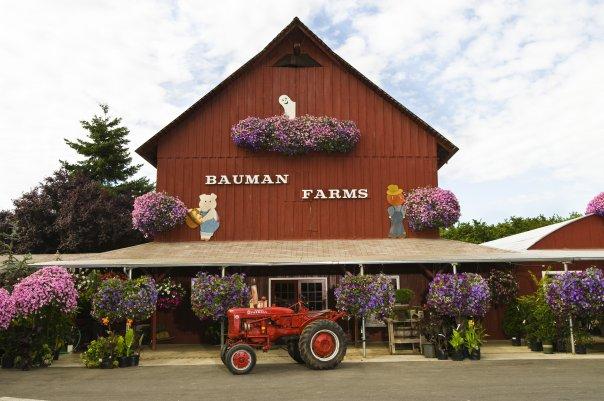 8) Bauman's Farm and Garden, Gervais