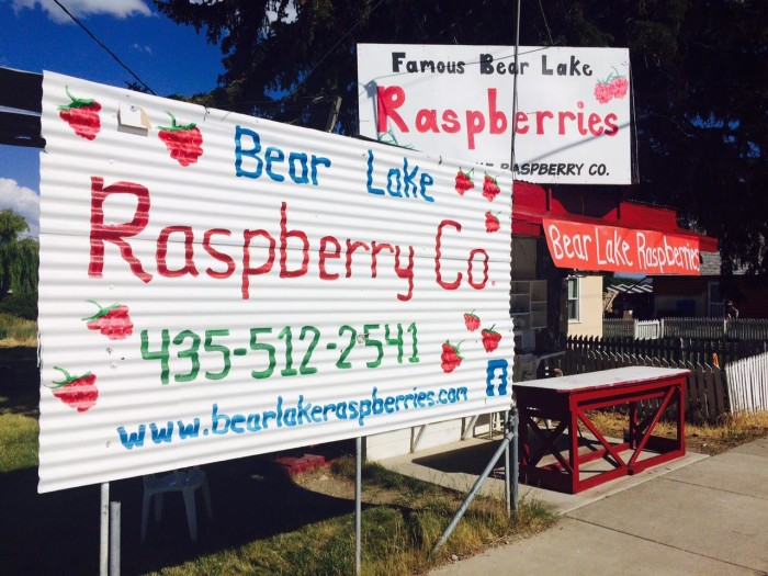 6) Rich County: Bear Lake Raspberry Company, Laketown