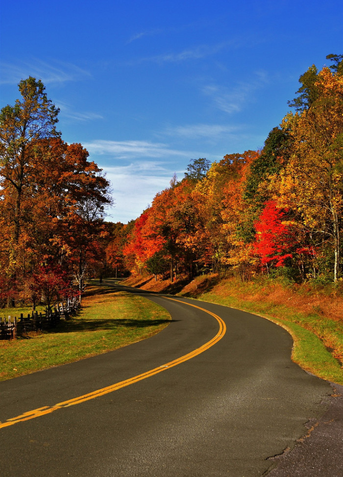 11. Drive the Blue Ridge Parkway - from Rockfish Gap through the Shenandoah National Forest to the North Carolina Border
