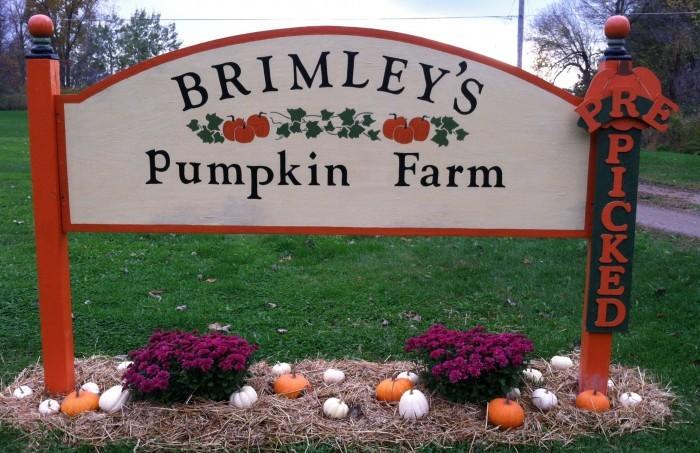 10) Brimley's Pumpkin Farm, Mason