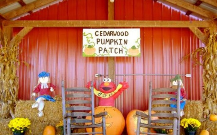 8) Cedarwood Nursery and Pumpkin Patch - McMinnville