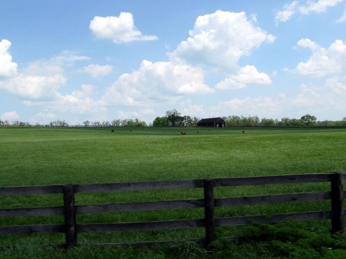10. Central Kentucky Near Georgetown