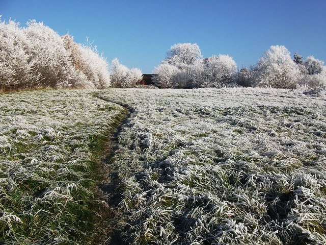 10. Chilly Nights and Frosts