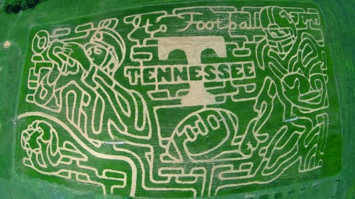 7) Corn Maze and Pumpkin Patch at Oakes Farm - Corryton
