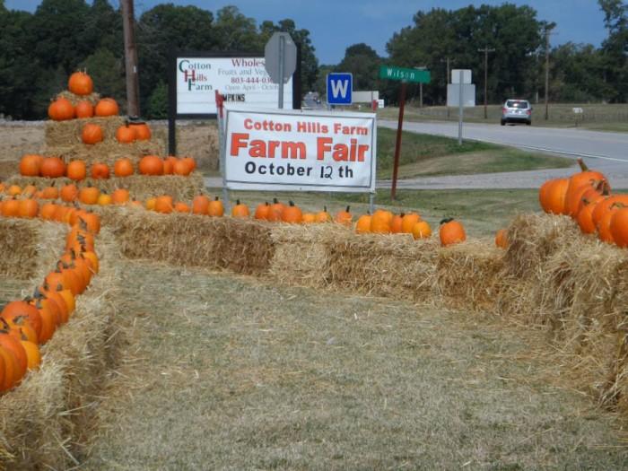 4. Cotton Hills Farm