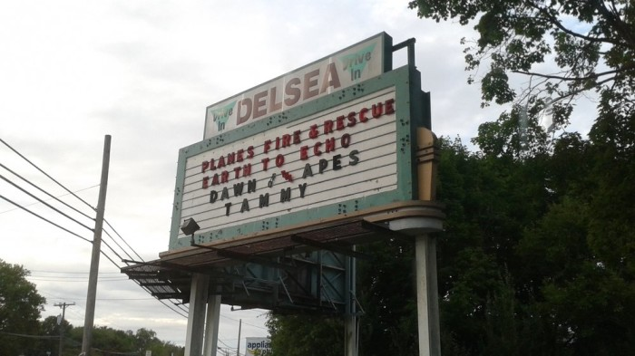 2. Delsea Drive-In Theater, Vineland