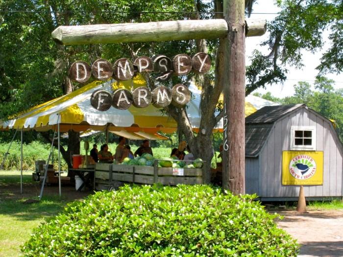 1. Dempsey Farms